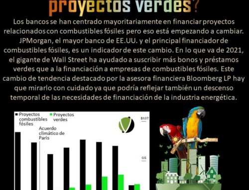 2021: ¿inflexión bancaria en proyectos verdes?