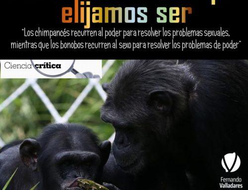 Seremos el mono que elijamos ser