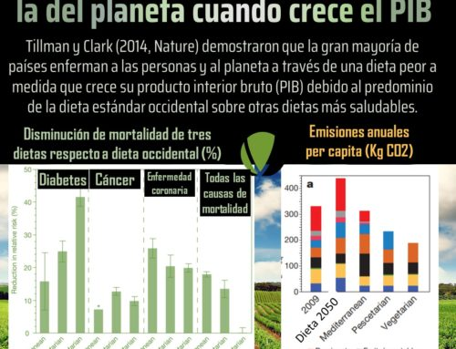 La dieta empeora nuestra salud y la del planeta cuando crece el PIB