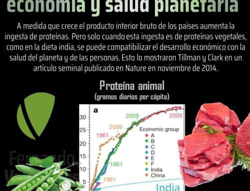 La proteína vegetal compatibiliza economía y salud planetaria